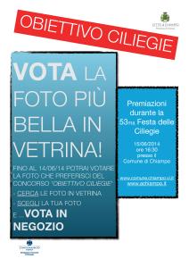 UV  Locandina voto popolare Conc_foto_OC